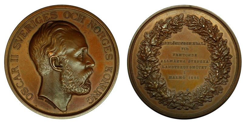 Швеция Медаль 15-го Шведского Сельскохозяйственного съезда в городе Мальмо 1881 (бронза, диаметр 58 мм), цена 16-20 евро