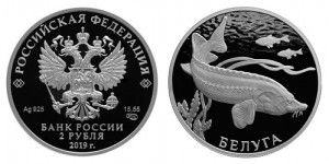 Россия 2 рубля 2019 СПМД Белуга